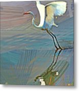 Egret Getting Ready For Take Off Metal Print