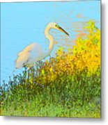 Egret In The Lake Shallows Metal Print
