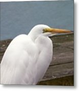 Egret On The Dock Metal Print