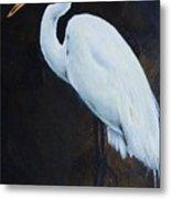 Egrets Series Four Metal Print