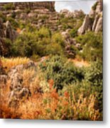 El Torcal Rock Formations Metal Print