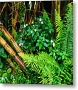 El Yunque National Forest Ferns Impatiens Bamboo Metal Print