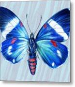 Electric Blue Moth Metal Print