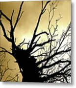 Electric Tree Black And Gold Metal Print