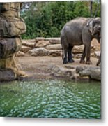 Elephant And Waterfall Metal Print