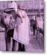 Elephant At Amber Fort Metal Print