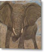 Elephant Charging Metal Print