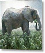 Elephant Eating Onions Metal Print