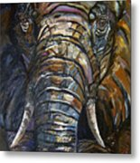 Elephant Faces Of Nature Series Metal Print