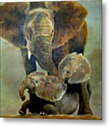 Elephant Familly Metal Print