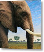 Elephant On Safari Metal Print