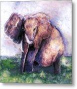 Elephant Poised Metal Print