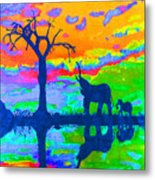 Elephant Reflections Metal Print