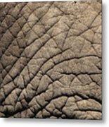 Elephant Skin Background Metal Print