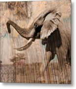 Elephant Visions Wall Art Metal Print