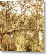 Elevated Country Metal Print