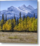 Elk Buffet With A View Metal Print