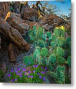 Elk Mountain Flowers Metal Print by Inge Johnsson
