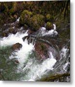 Elkhorn Creek 2 Metal Print