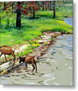 Elks Crossing Metal Print