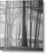 Ellacoya Fog - January Thaw Metal Print