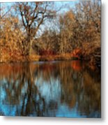 Elm By The Connecticut River In Autumn Metal Print