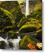 Elowah Autumn Metal Print