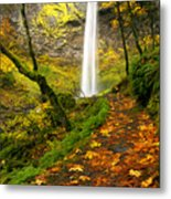 Elowah Autumn Trail Metal Print