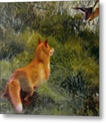 Eluding The Fox Metal Print
