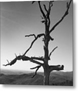 Embrace With Open Arms Metal Print