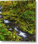 Emerald Falls And Creek In Autumn  Metal Print