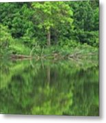 Emerald Green Reflections Metal Print