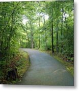 Emerald Trail Metal Print