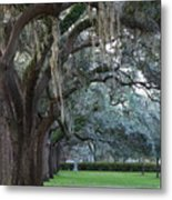 Emmet Park In Savannah Metal Print