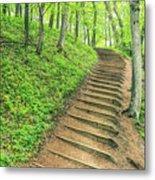 Empire Bluffs Trail Steps In Michigan Metal Print