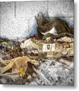 Empty Bottles And Discarded Pants Metal Print