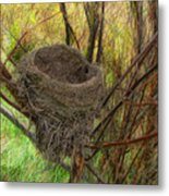 Empty Nest In Autumn Metal Print