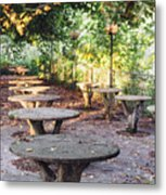 Empty Picnic Tables In The Early Fall With Fallen Leaves Metal Print
