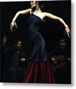 Encantado Por Flamenco Metal Print by Richard Young