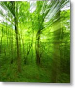 Enchanted Forest 1 Metal Print