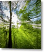 Enchanted Forest 5 Metal Print