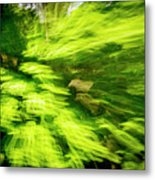 Enchanted Forest 6 Metal Print