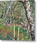 Enchanted Forest Metal Print