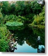 Enchanted Gardens Metal Print