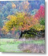 Enchanted Park Metal Print by Lori Seaman