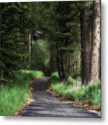 Enchanted Path Metal Print
