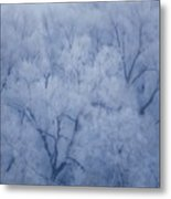 Enchanted Woodland Metal Print
