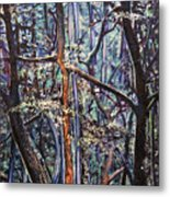 Enchanted Woods Metal Print