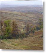 Enchantment Of The September Grasslands Metal Print