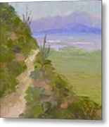 End Of Day At Gates Pass Metal Print